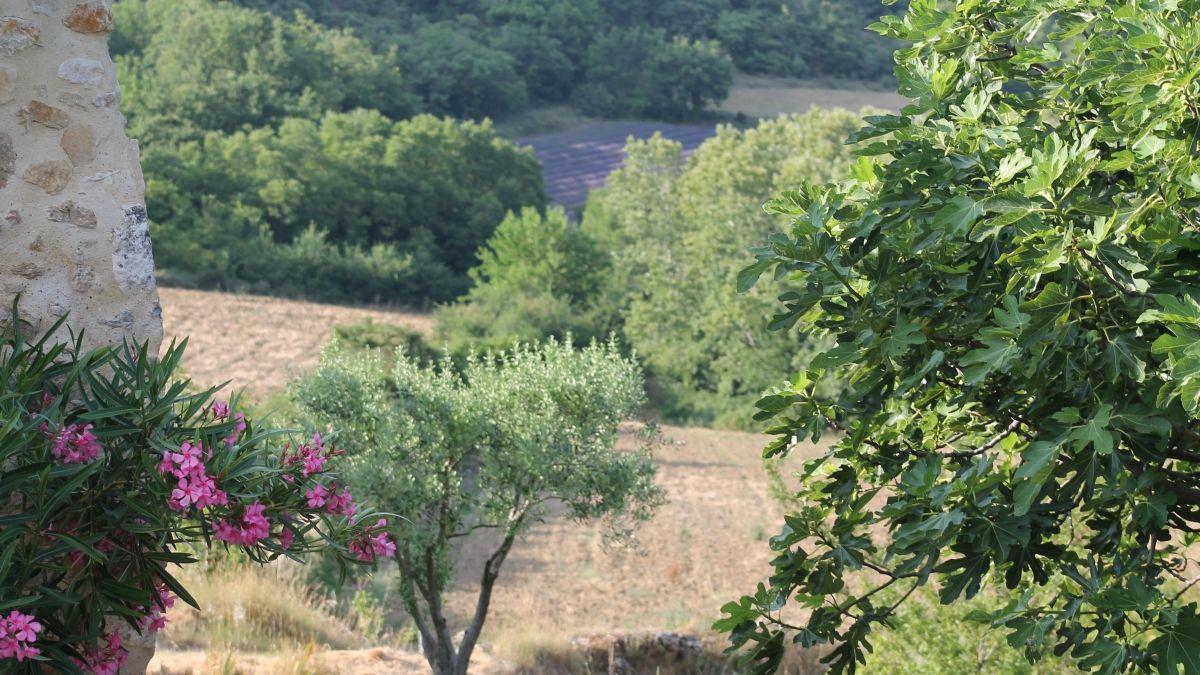 Le Mas D U0026 39 Eylieux Gites  U00e0 Saint Montan Village De Caract U00e8re